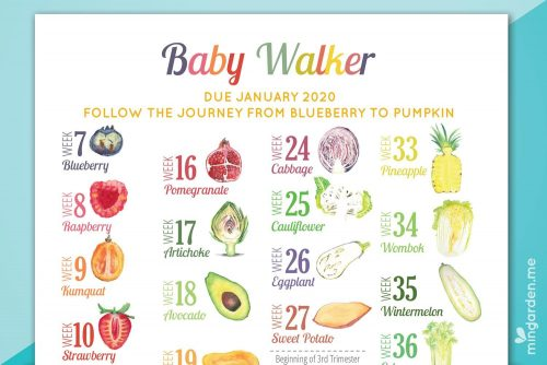 Personalised Custom Pregnancy Milestone Countdown and Milestones Print Close Up