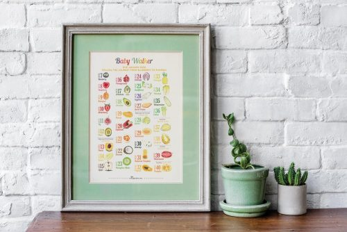 How Big is Baby? Fruit and Vegetable Comparisons