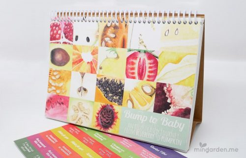 Pregnancy Milestones Journal Bump to Baby Illustrated Diary